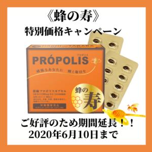 栄養機能食品 濃縮プロポリスカプセル 蜂の寿 特別価格キャンペーン 延長
