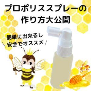 プロポリススプレー 作り方 大公開 プロポリス 蜂の宝本舗